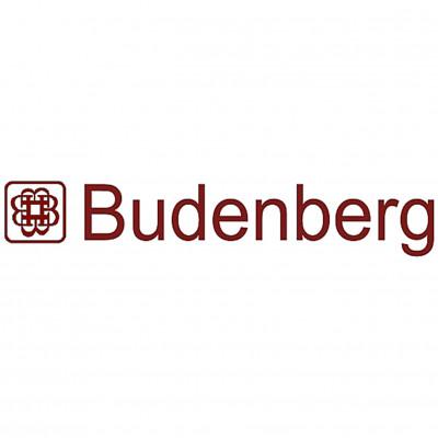 Budenberg - Pressure Gauge / Thermometer / RTD / Valve